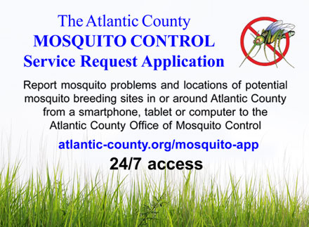 The Atlantic County MOSQUITO CONTROL Service Request Application -  Report mosquito problems and locations of potential mosquito breeding sites in or around Atlantic County from a smartphone, tablet or computer to the Atlantic County Office of Mosquito Control atlantic-county.org/mosquito-app 24/7 access to supplement our customer service support at (609) 645-5948