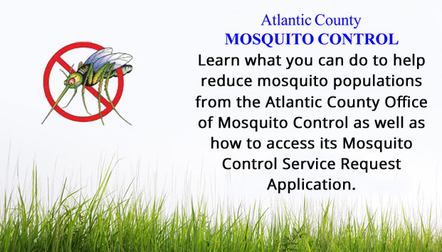 Learn what you can do to help reduce mosquito populations from the Atlantic County Office of Mosquito Control as well as how to access its Mosquito Control Service Request Application. [Link to Office of Mosquito Control]