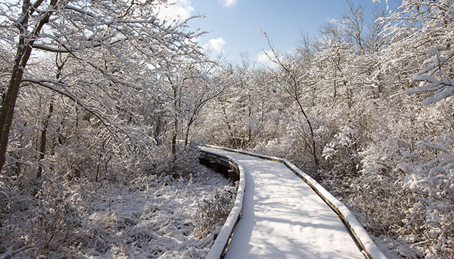 Scenic Atlantic County